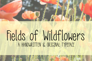 MRF Fields of Wildflowers