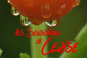 les Sensations de Cerise