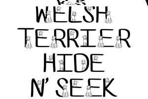 Ks Welsh Terrier Hide N Seek