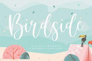 Birdside