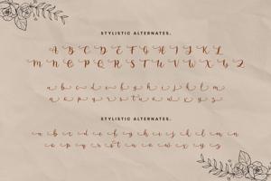 Anguela Script