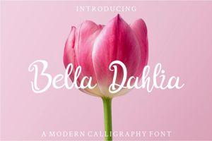 Bella Dahlia