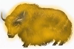 Yellow Yaks Yelp and Yodel