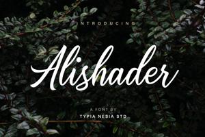 Alishader Demo