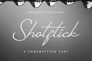 Shotflick