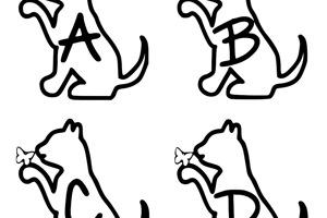 Ks Alphacat