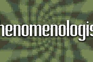 Phenomenologist