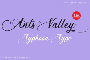 Ants Valley