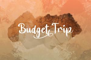 a Budget Trip