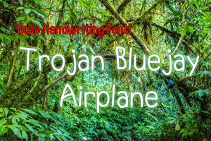 Trojan Bluejay Airplane