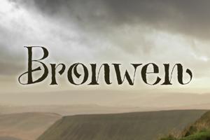 Bronwen DEMO
