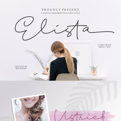 Fav Fonts collection