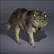scarletwolf avatar