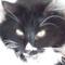 Cat Slater
