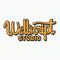 wellscript studio