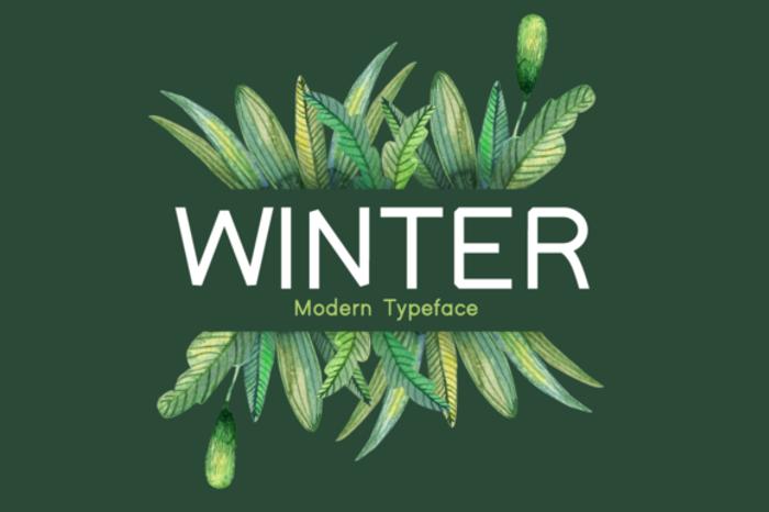 Winter Font poster