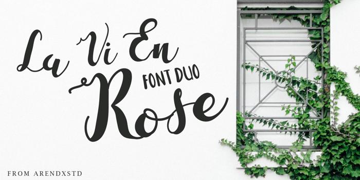 La Vi En Rose Font poster