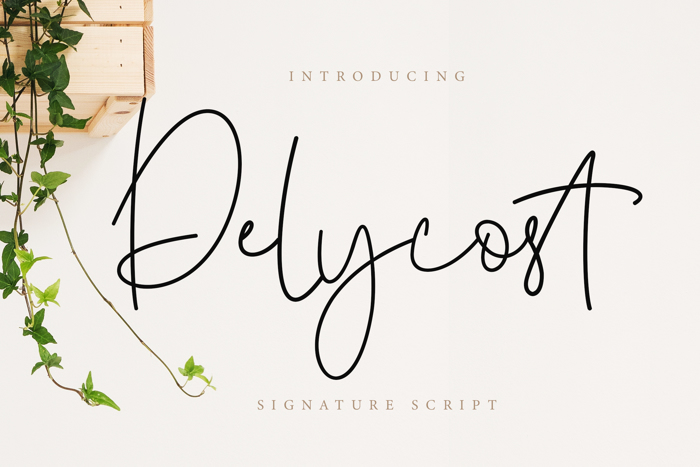 Delycost Font poster