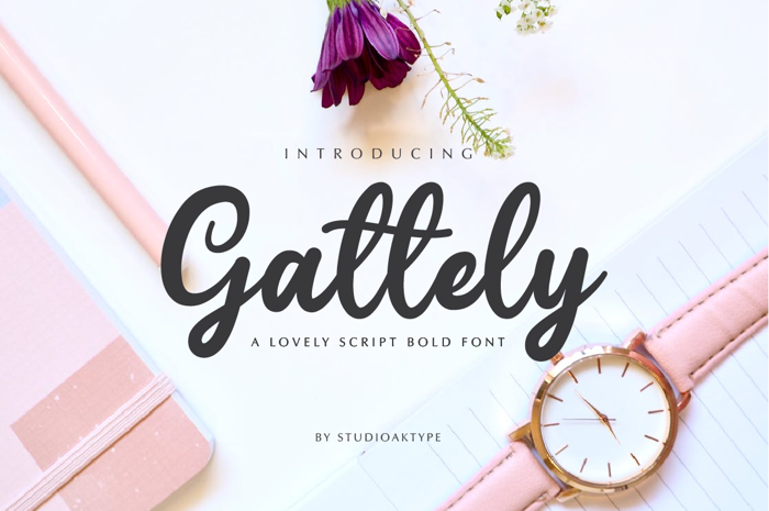 Gattely Font poster