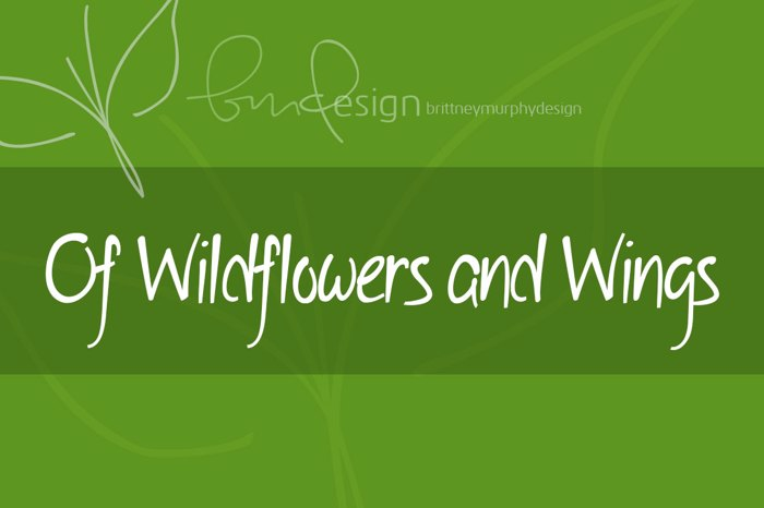 Of Wildflowers and Wings Font poster