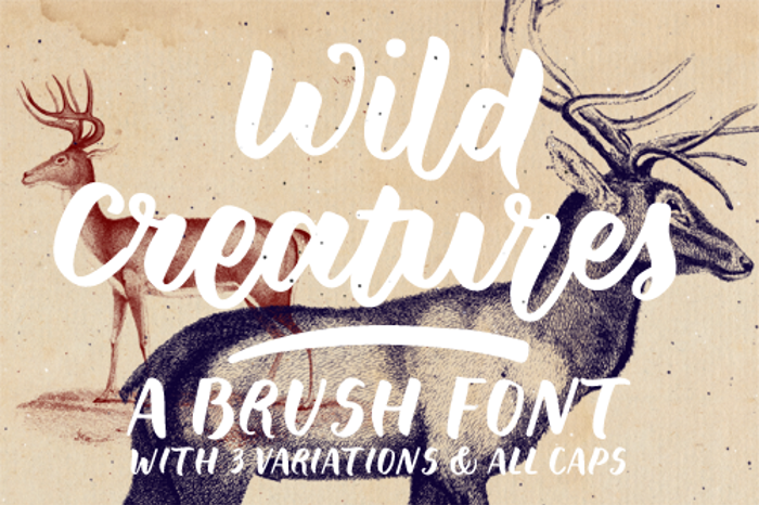 Wild Creatures Sample Font poster