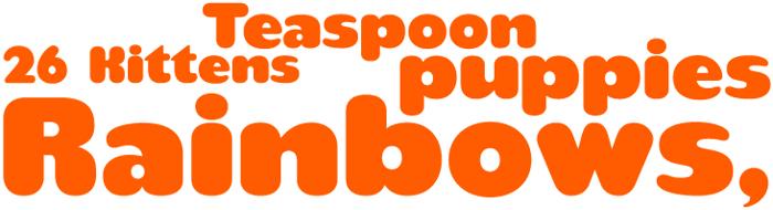 teaspoon Font poster