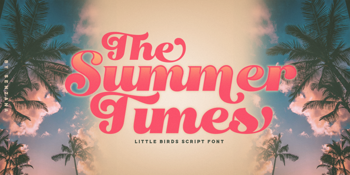 Little Birds Font poster