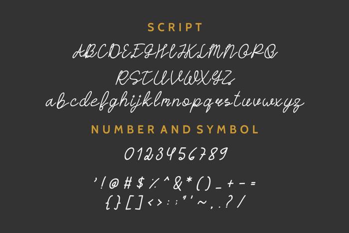 HASTON Font poster