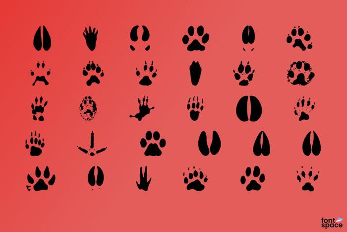 Animal Tracks Font