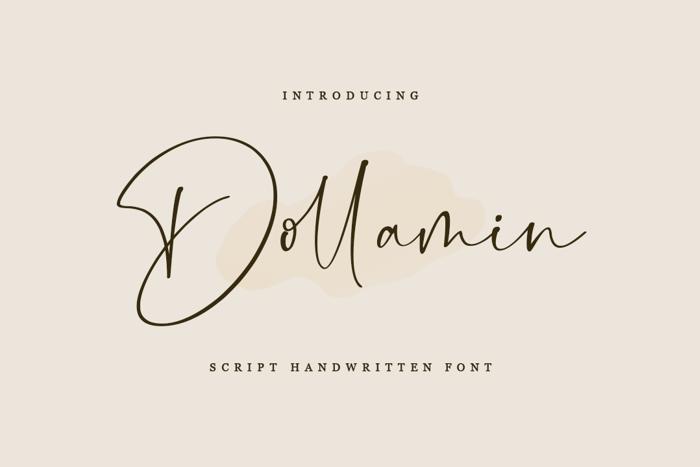 Dollamin Font poster