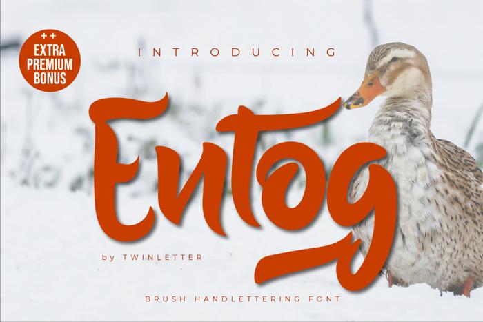 Entog Font poster
