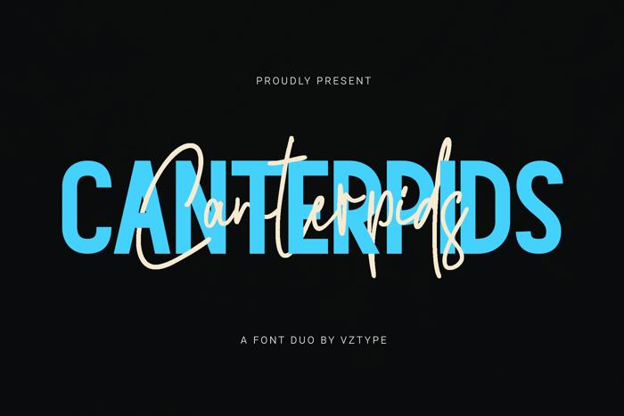 Canterpid Sans Font poster