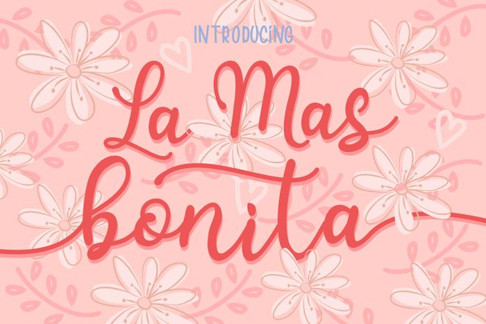 bonitas Font poster