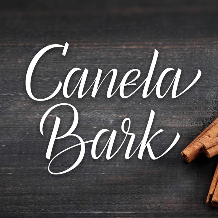 Canela Bark Font poster