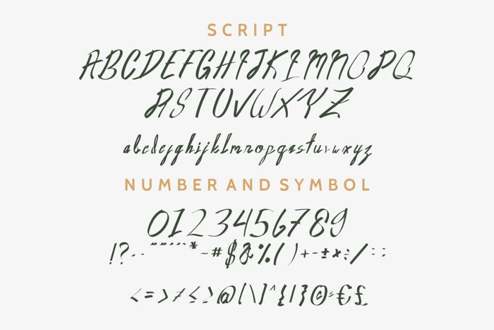 Oldwin Font poster