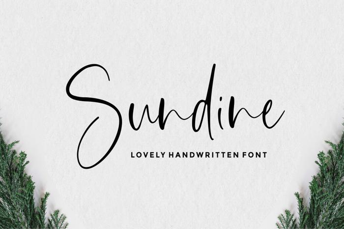 Sundine Font poster