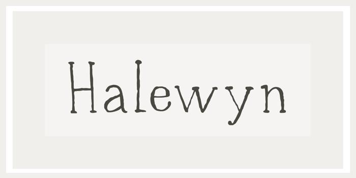 DK Halewyn Font poster