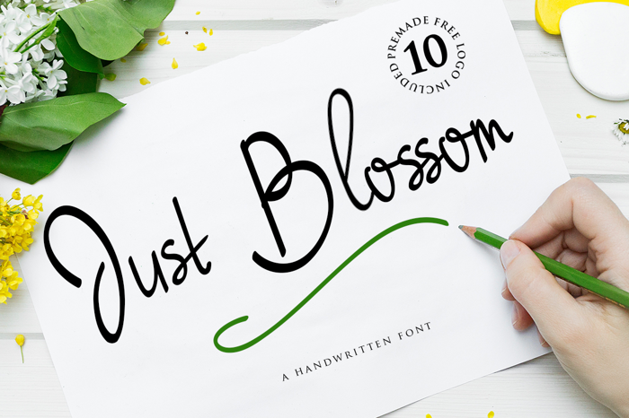 Just Blossom Font poster