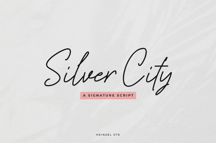 Silver City Font poster