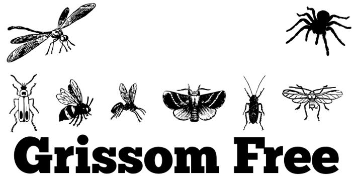 Grissom Free Font poster