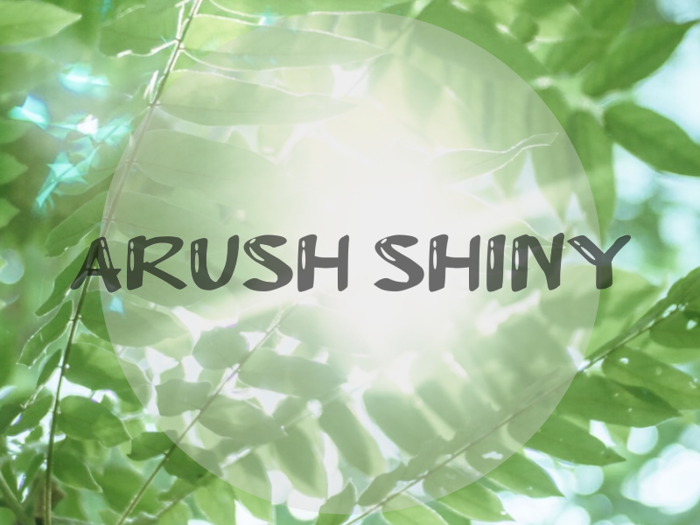 a Arush Shiny Font poster