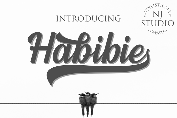 Habibie Font poster