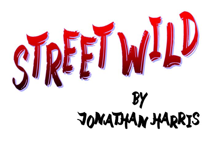 Street Wild Font poster