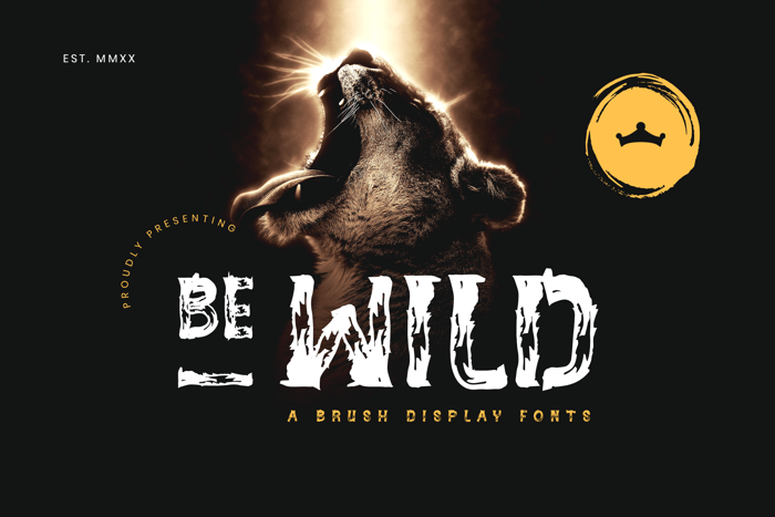 BE - WILD Brush Font poster