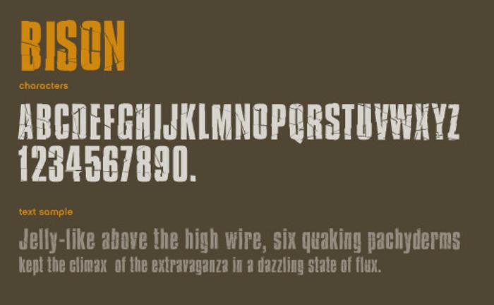 Bison Font poster