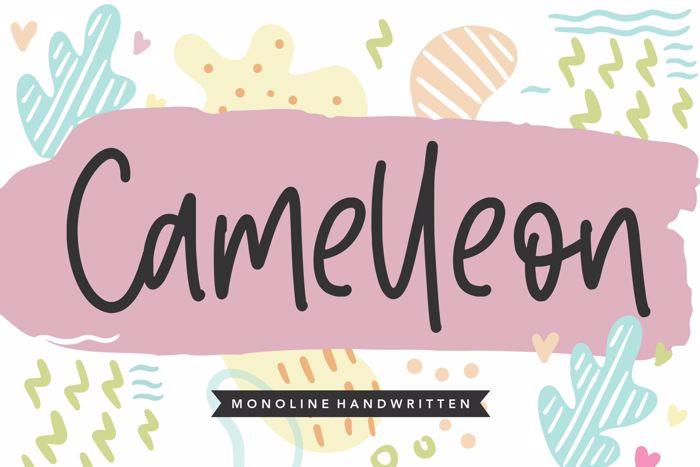 Camelleon Font poster