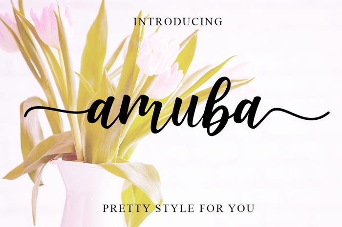Amuba Script Font poster