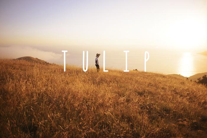 Tulip Font poster