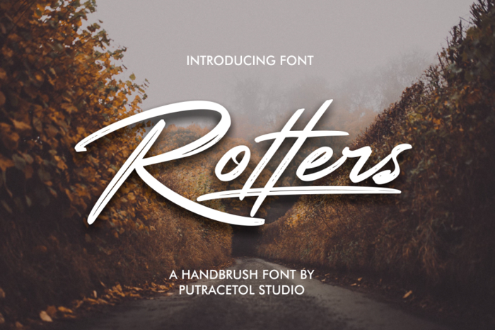 Rotters Font poster