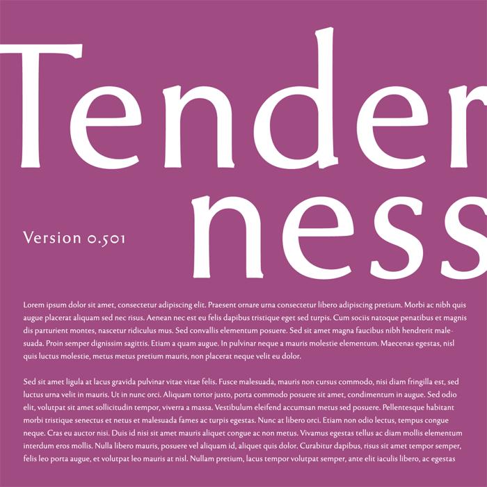 Tenderness Font poster